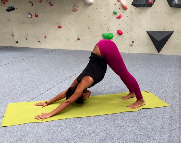 Sandra Berlin, Adho Mukha Svanasana - Downward Facing Dog